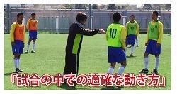 サッカー早野05.jpg